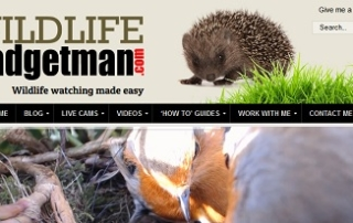 Website Goes Live Thumb
