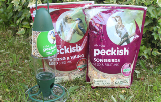 Peckish-Seed-and-Feeder-Pic-1