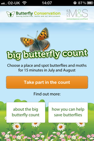 Big-Butterfly-Count-App-300