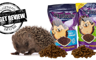 Spikes-Header-Review