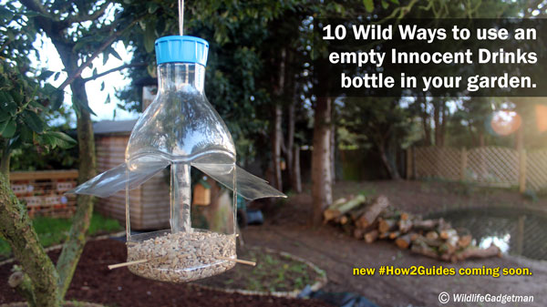 10 Wild Ways To Use An Empty Innocent Drinks Bottle In