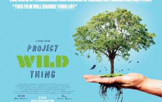 Project-Wildthing-Banner