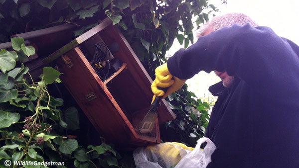 Cleaning-Nest-Box-1-600