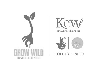Client-Lgo-Grow-Wild
