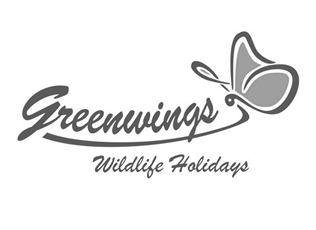 Client-Logo-Greenwings