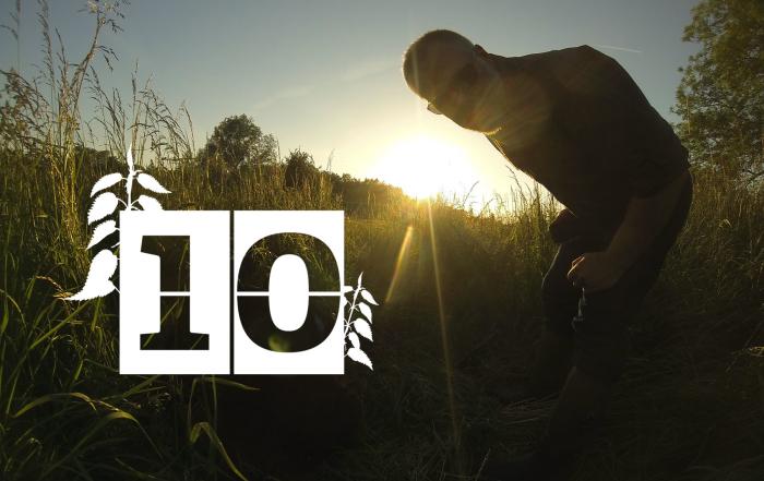 30-Days-Wild-Day-10-Sunset-4-Banner