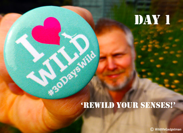 30-Days-Wild-Jason-Badge-Day-1-621