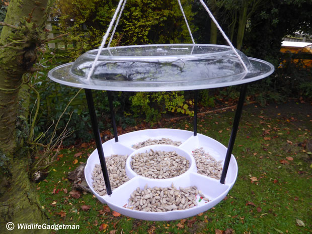 New Snack-Tray-Feeder-4-620