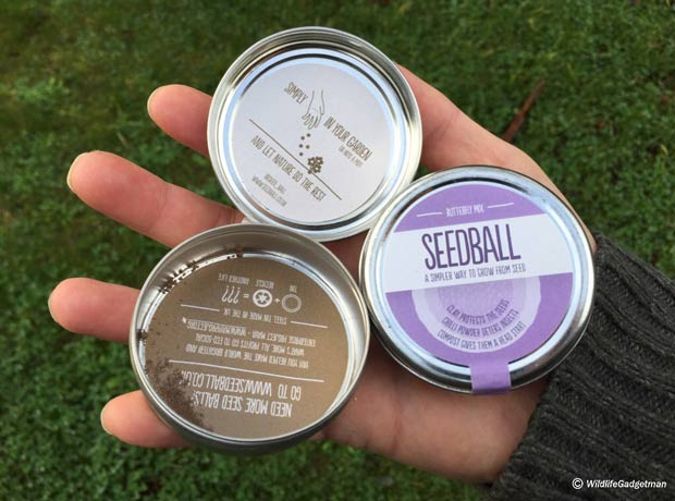 Seedball-Tins-in-hand