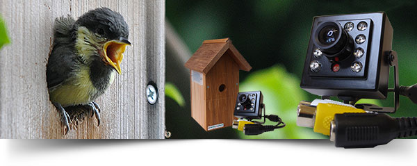 Shop-Banner-Nest-Boxes-4