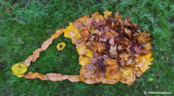 Get Creative On Your Walks - Leave A Little #LeafArt