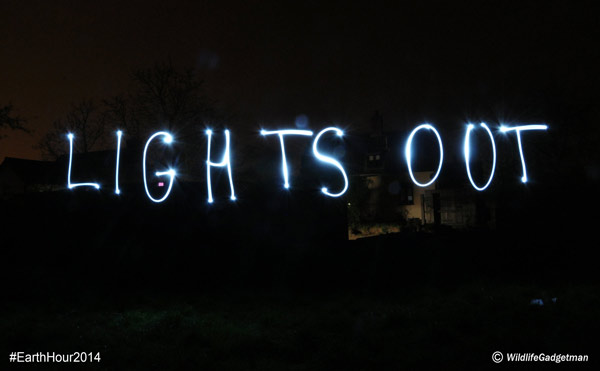 LP-Lights-Out-600