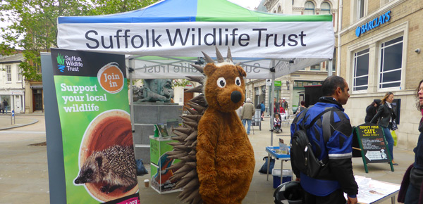 I Dress Up As A Hedgehog To Support Suffolk Wildlife Trust!