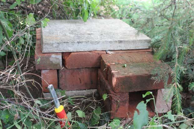 Brick-Hog-Home-7-621