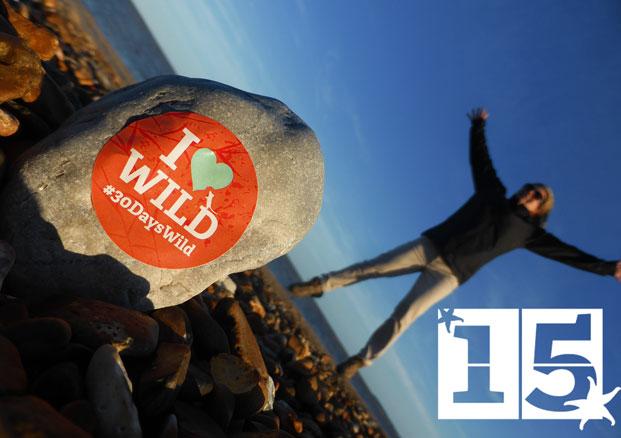 30 Days Wild Day 15 – A Sunset Suffolk Beach Clean