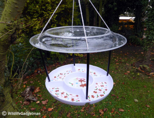 Make A Festive Hanging Bird Table