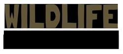 WildlifeGadgetman.com