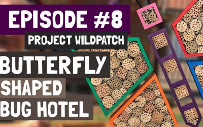 Episode 8 – Creating A Butterfly Shaped Bug Hotel