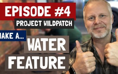 Episode 4 – How To Create A Small Water Feature